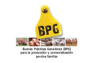 porcinos-manual-web