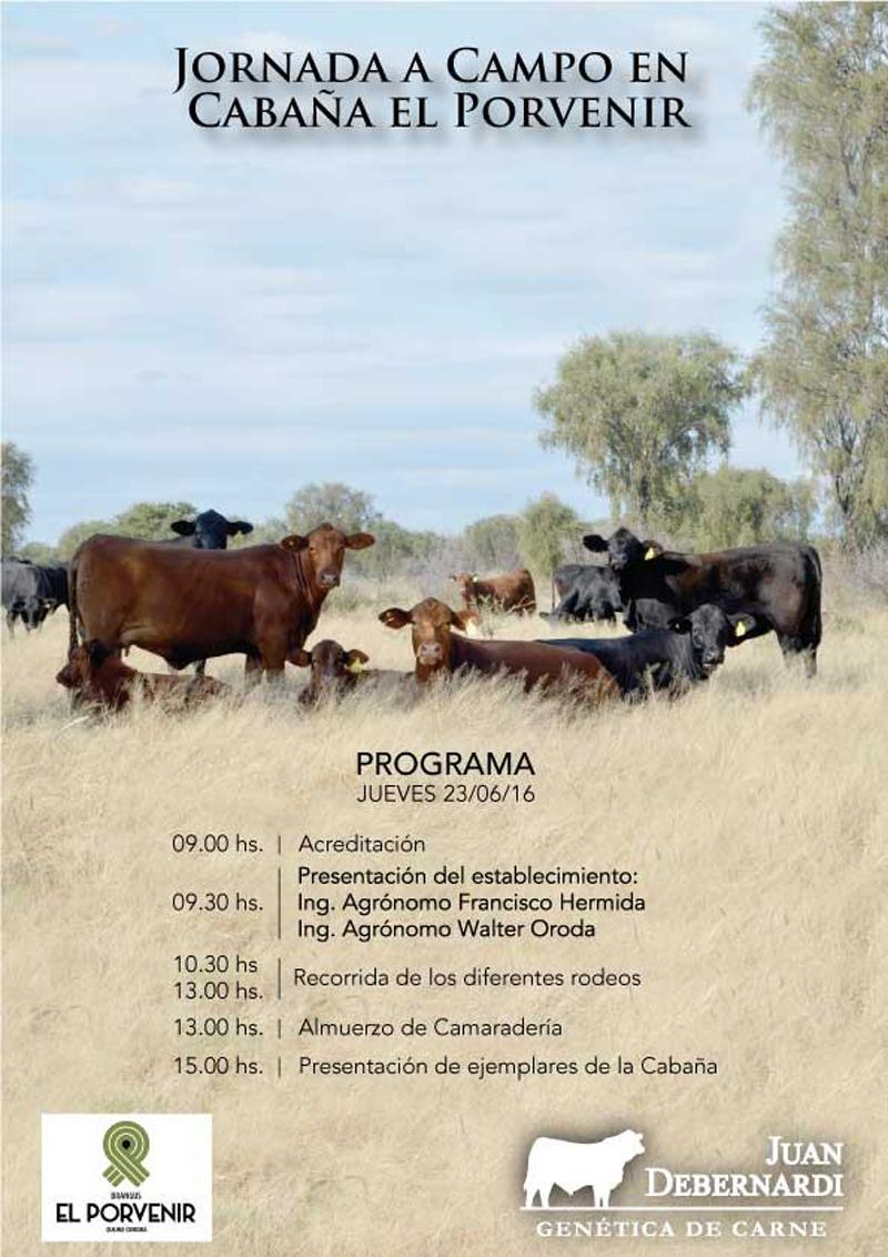 ElPorvenir-VacasCampoFolleto