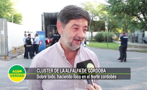 https://agroverdad.com.ar/wp-content/uploads/2019/12/Luis-Magliano-Cluster-Alfalfa650x399.jpg